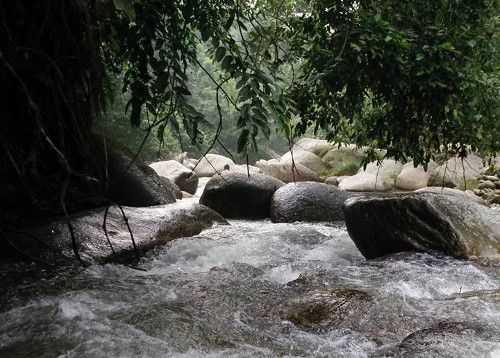 Tempat Menarik Di Taiping Perak Percutian Bajet