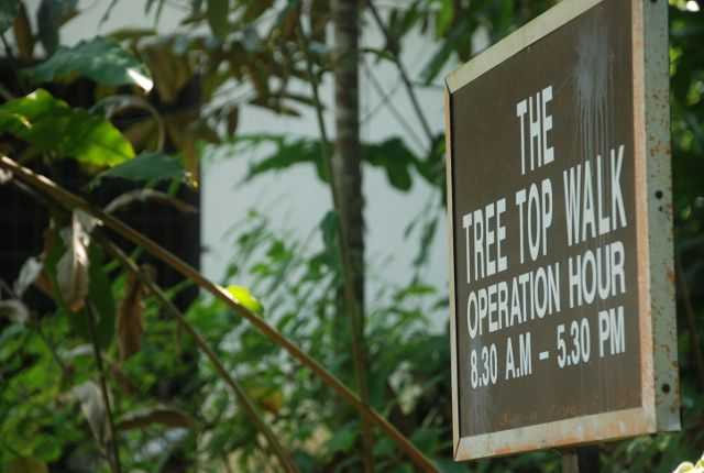Waktu operasi Tree Top Walk Sungai Sedim.